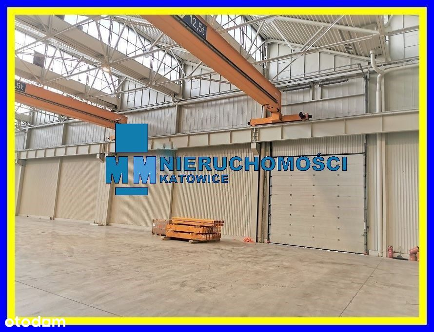 Magazyn do wynajęcia Katowice 1000 m2, obsługa