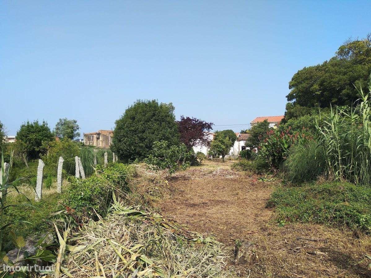 Quintas e herdades para comprar, Canidelo, Porto - Foto 8