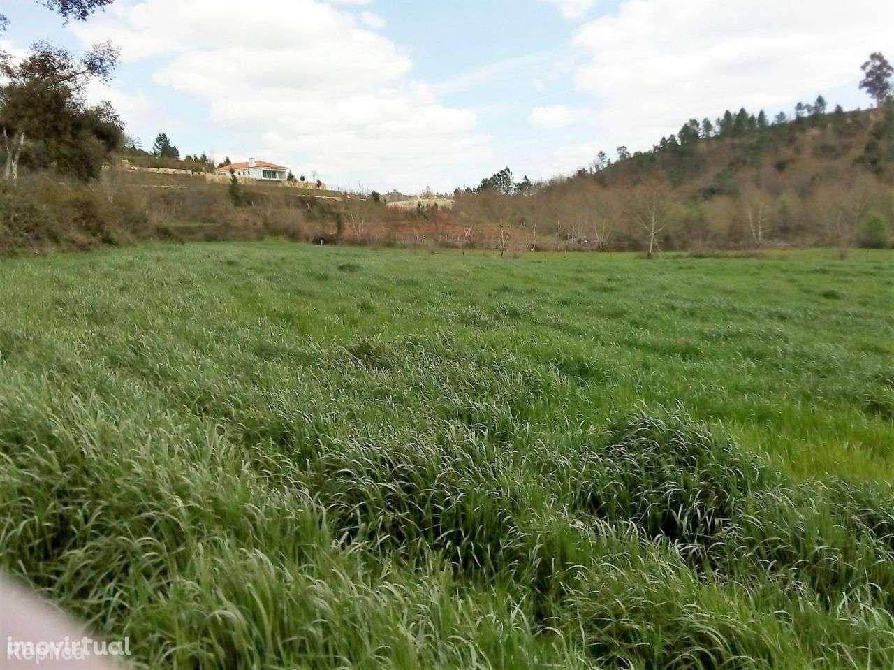 Terreno para comprar, Basto, Braga - Foto 6