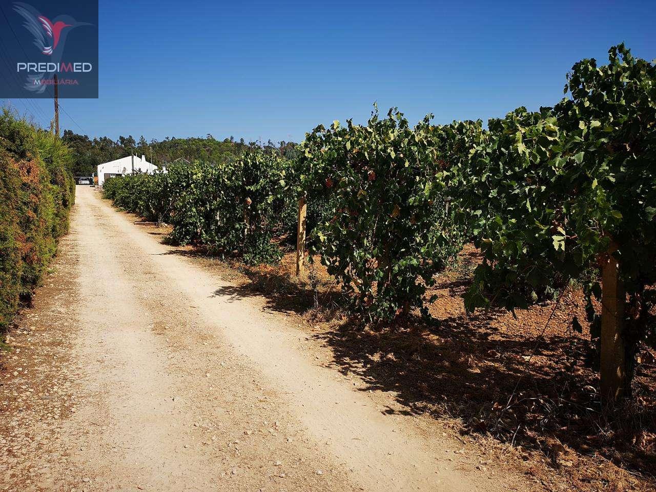 Quintas e herdades para comprar, Portimão - Foto 21