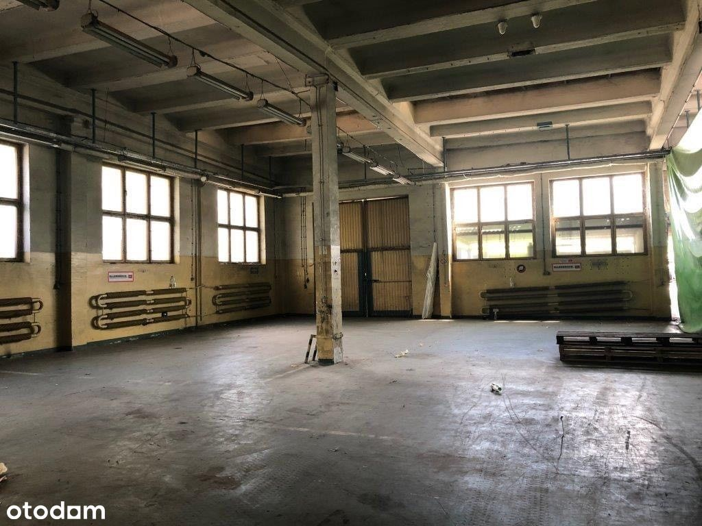 Lokal użytkowy, 370 m², Śrem