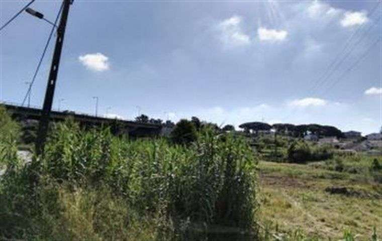 Terreno para comprar, Vila Verde, Coimbra - Foto 6