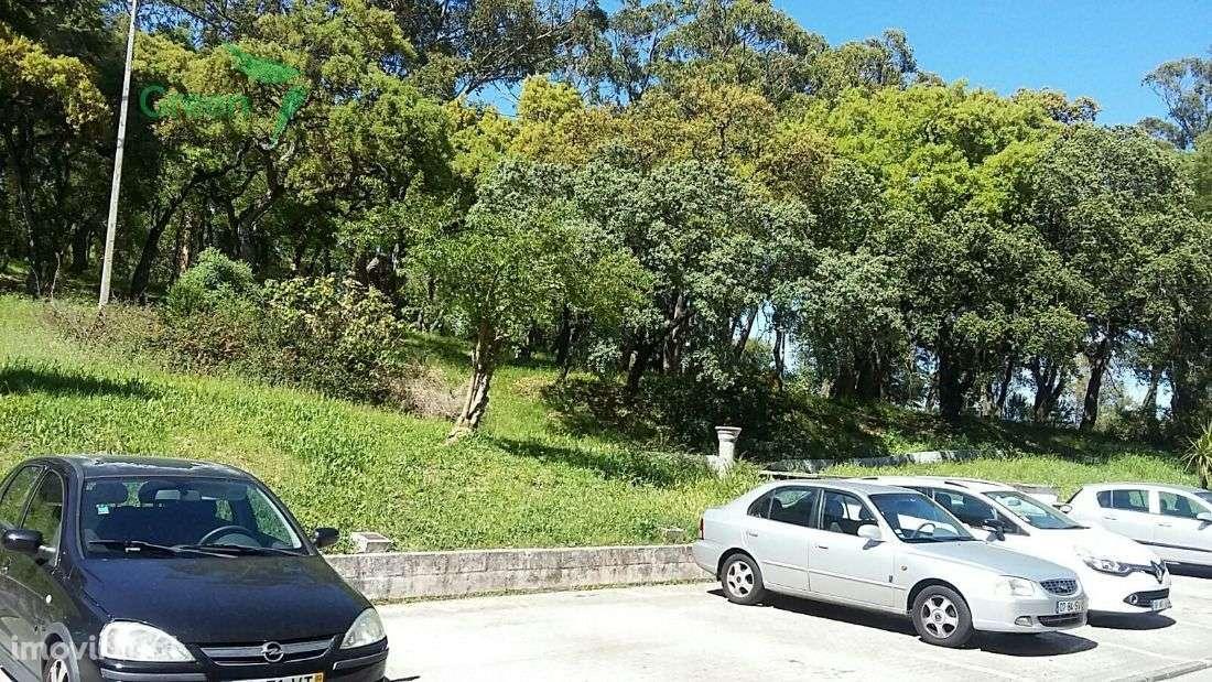 Apartamento para comprar, Queluz e Belas, Sintra, Lisboa - Foto 10