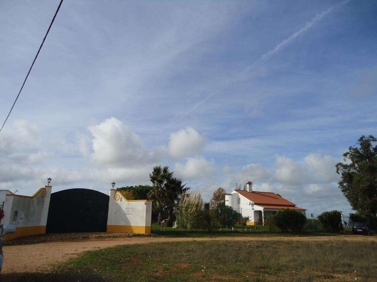 Terreno para comprar, Quinta do Anjo, Setúbal - Foto 1