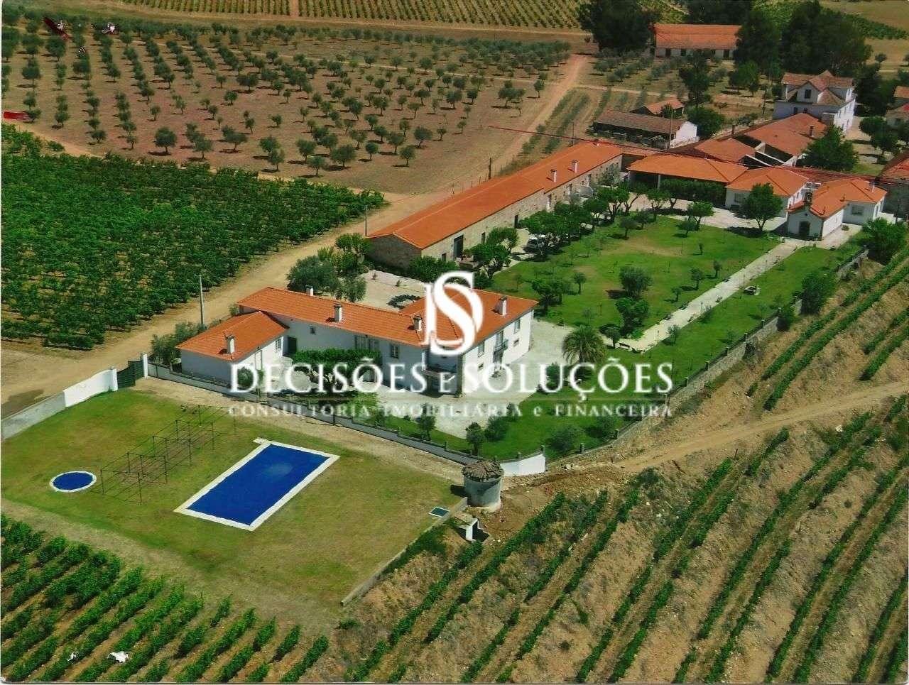 Quintas e herdades para comprar, Provesende, Gouvães do Douro e São Cristóvão do Douro, Sabrosa, Vila Real - Foto 1
