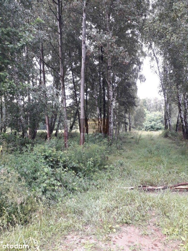 Działka (Budowlana) - Czarny Las