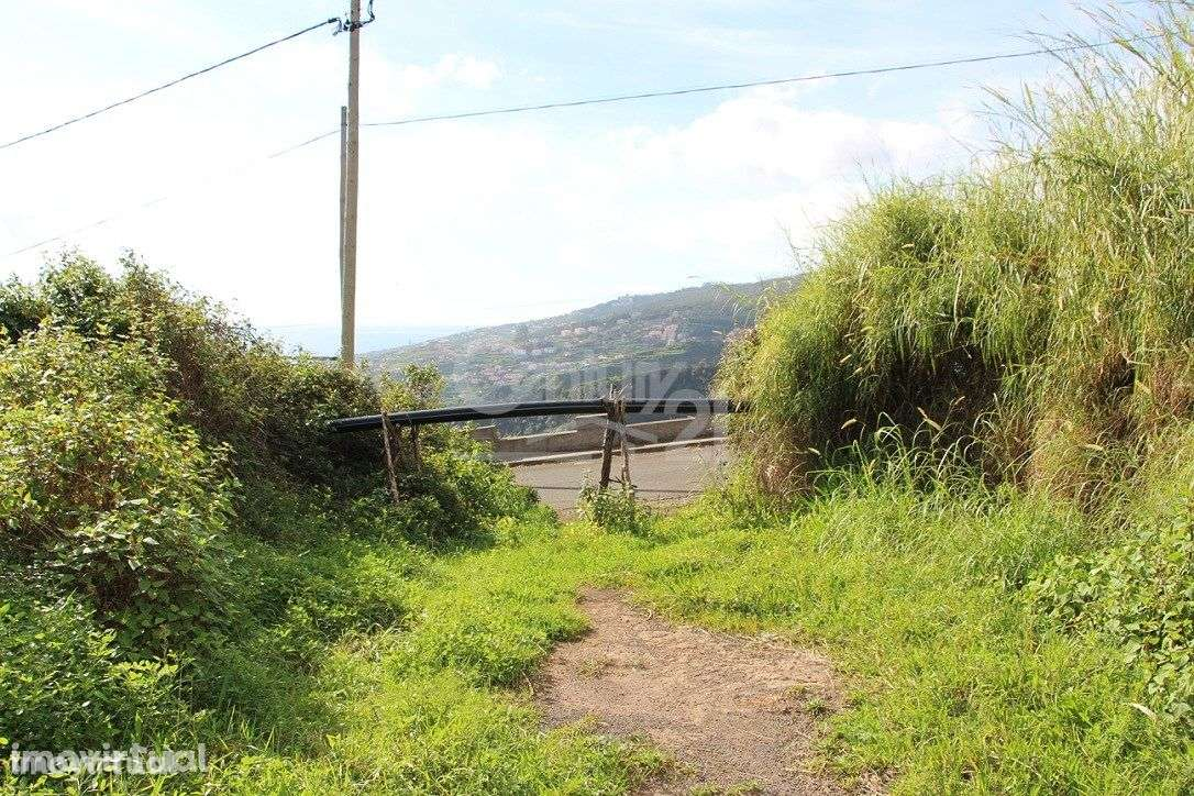 Terreno para comprar, Gaula, Ilha da Madeira - Foto 10