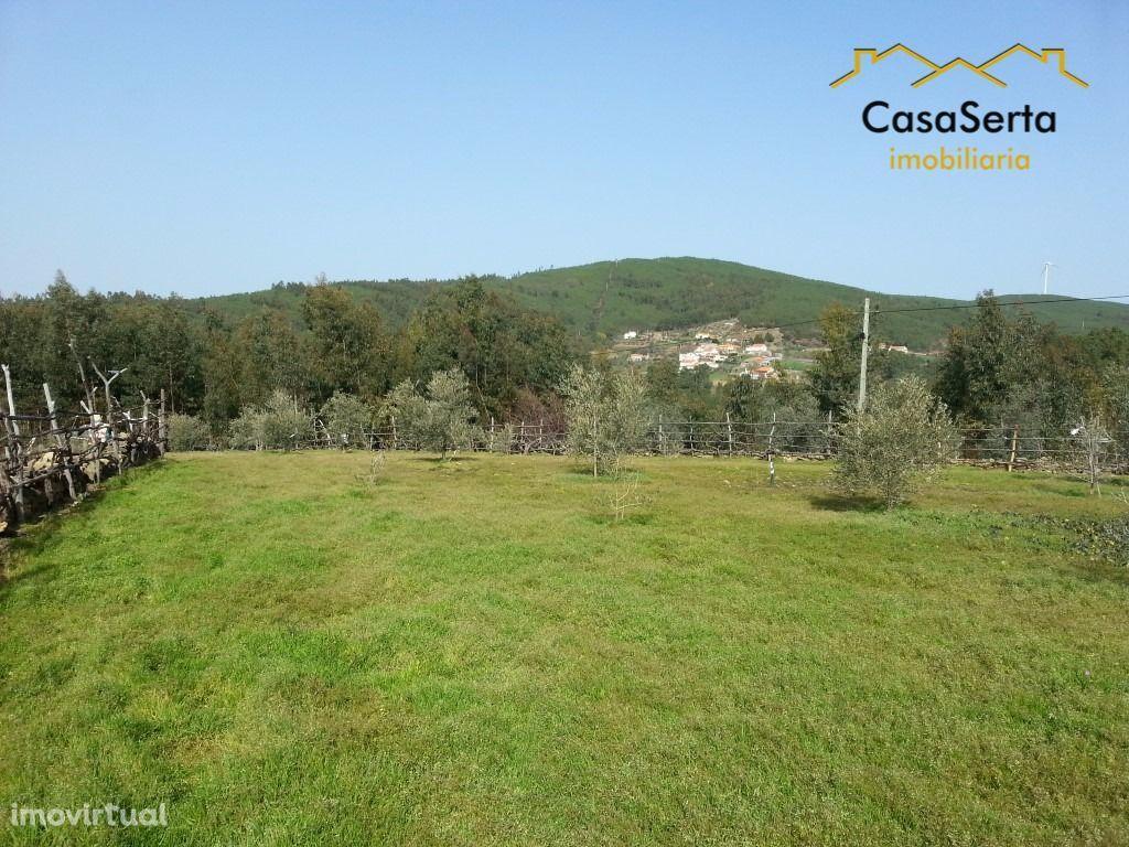 Terreno para comprar, Ermida e Figueiredo, Sertã, Castelo Branco - Foto 16