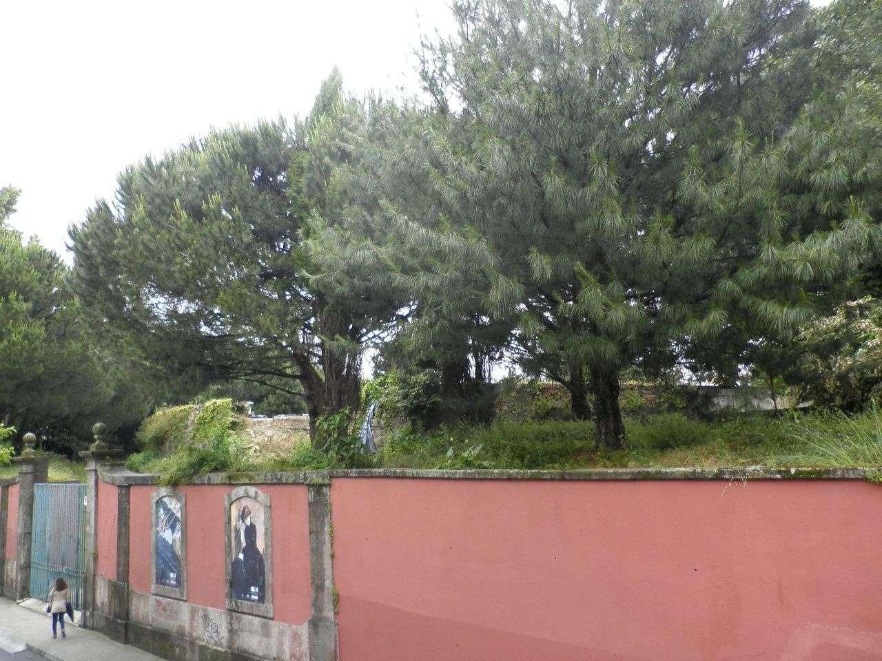 Apartamento para arrendar, Lordelo do Ouro e Massarelos, Porto - Foto 6