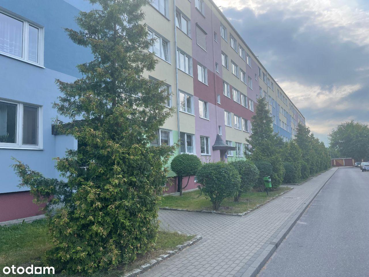 Przestronne mieszkanie 4-pokojowe + 2 piwnice