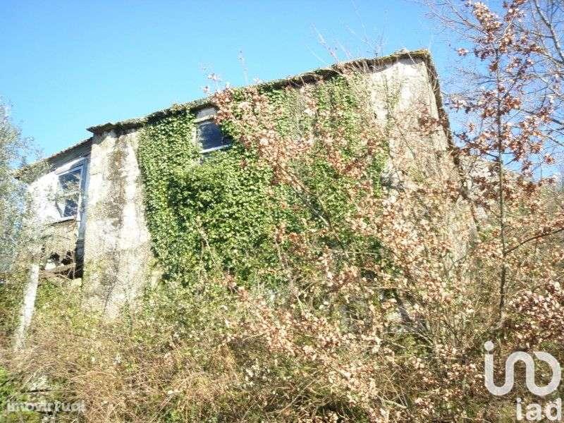 Quintas e herdades para comprar, Cinfães - Foto 2
