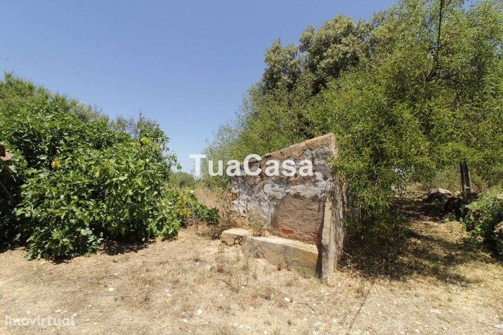 Quintas e herdades para comprar, Luz de Tavira e Santo Estêvão, Tavira, Faro - Foto 6