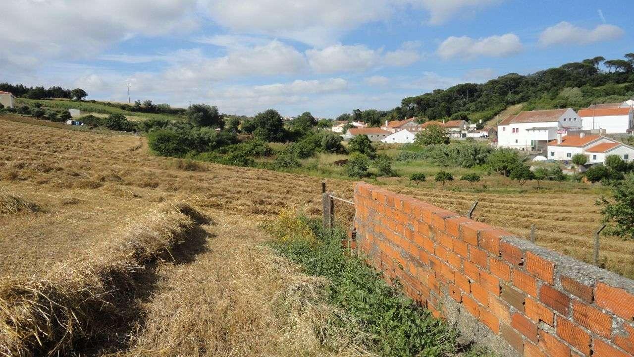 Quintas e herdades para comprar, Arruda dos Vinhos - Foto 14