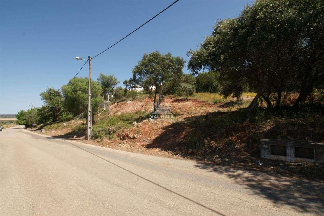 Terreno para comprar, Mexilhoeira Grande, Faro - Foto 3