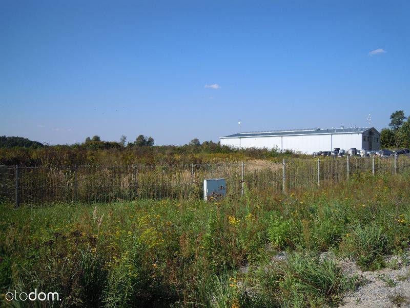 Działka, 5 000 m², Sulechów