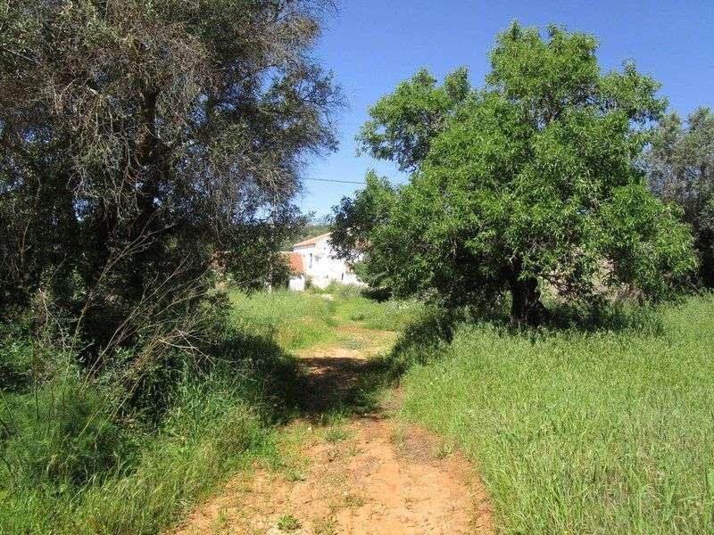 Quintas e herdades para comprar, Estômbar e Parchal, Lagoa (Algarve), Faro - Foto 10