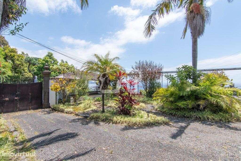Quintas e herdades para comprar, São Martinho, Ilha da Madeira - Foto 5