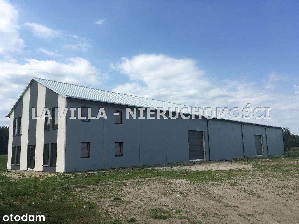 Hala/Magazyn, 900 m², Augustowo