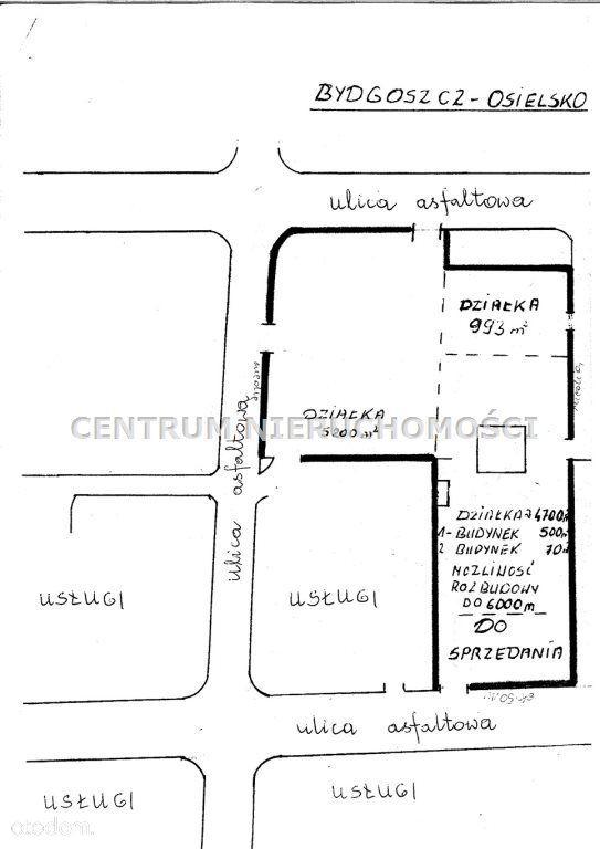 Lokal użytkowy, 1 300 m², Osielsko