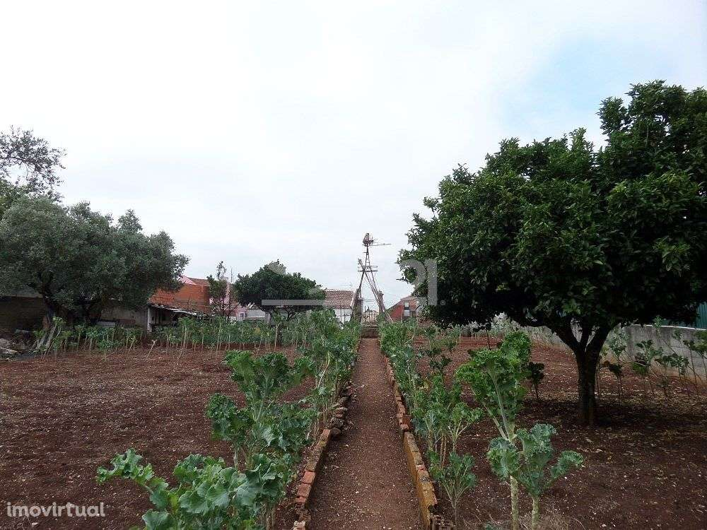 Quintas e herdades para comprar, Massamá e Monte Abraão, Sintra, Lisboa - Foto 12