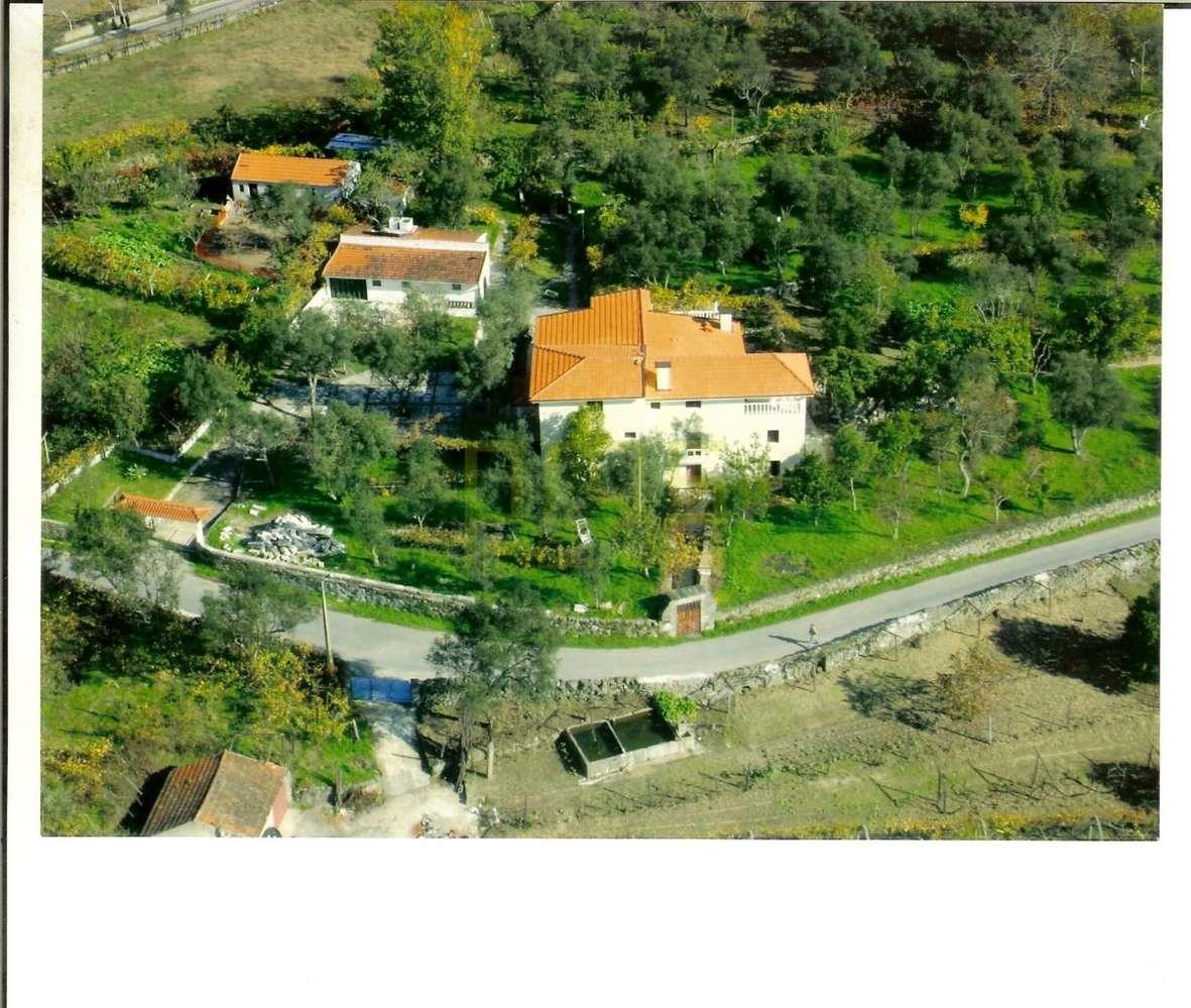 Quintas e herdades para comprar, Anreade e São Romão de Aregos, Resende, Viseu - Foto 2