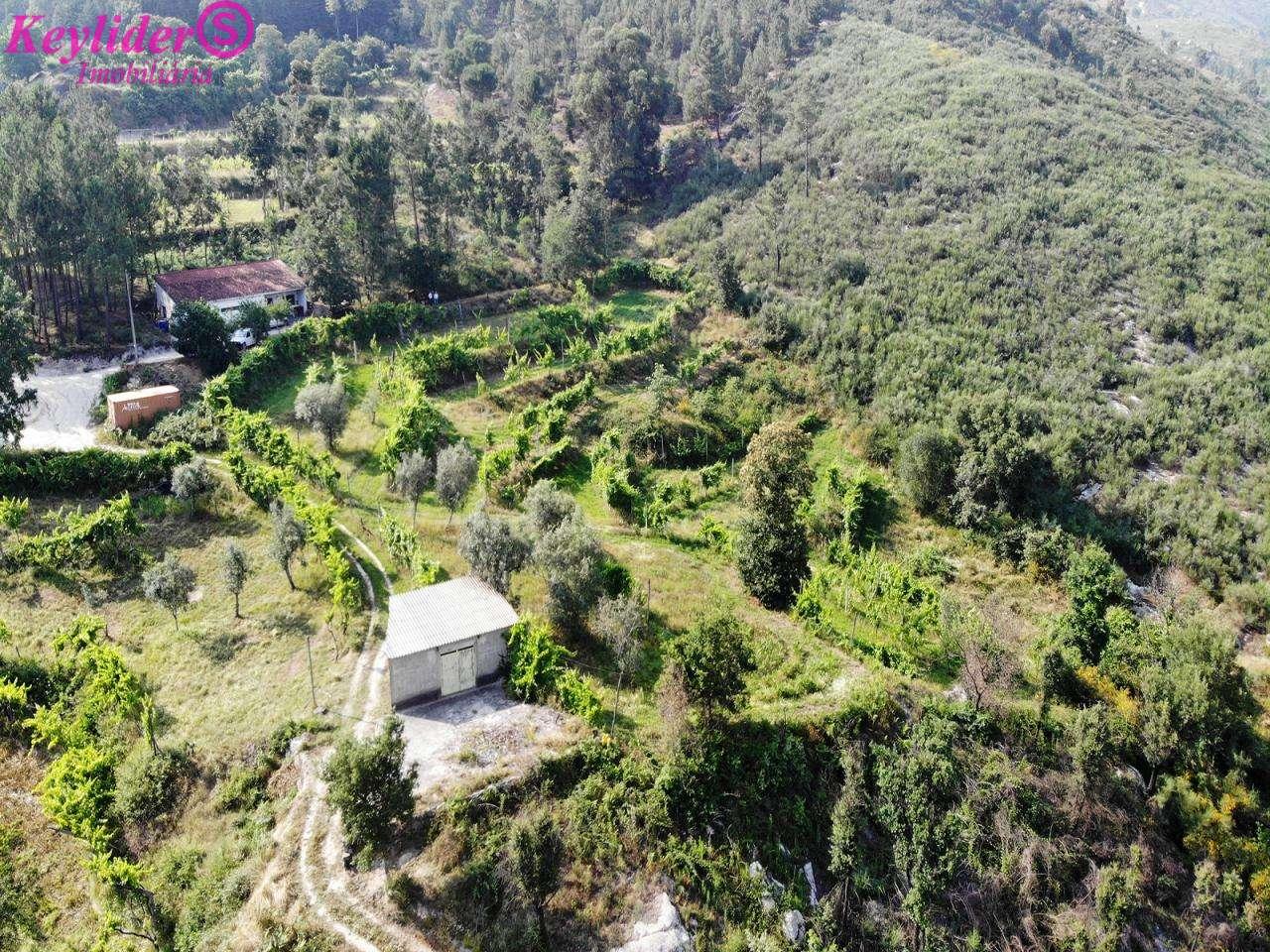 Quintas e herdades para comprar, Gondar, Porto - Foto 3
