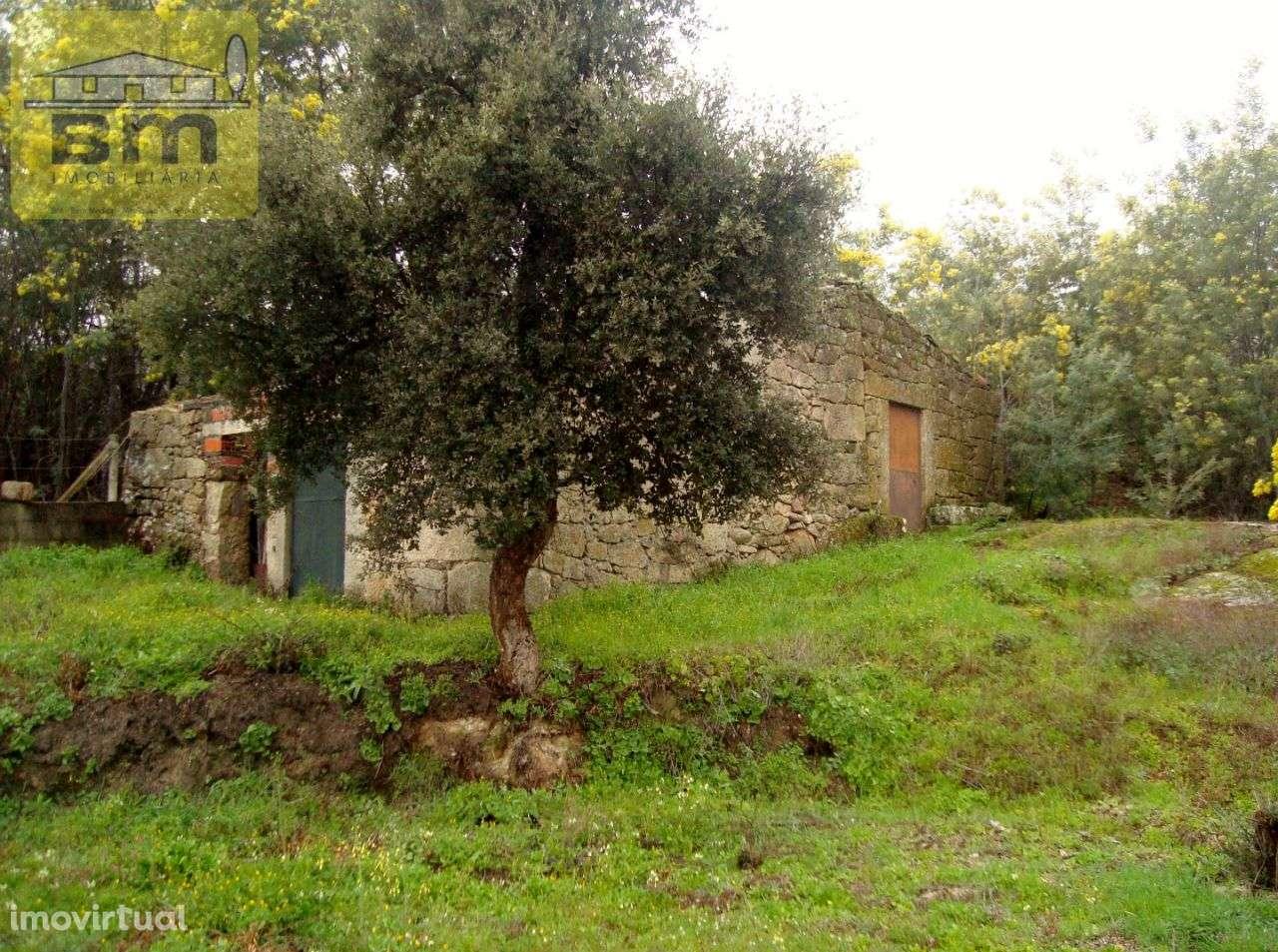 Quintas e herdades para comprar, Almaceda, Castelo Branco - Foto 11