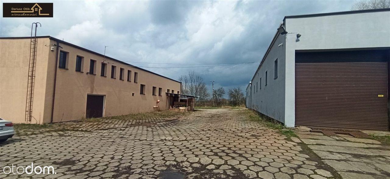 Hale po remoncie w pobliżu Cieszyna i działka