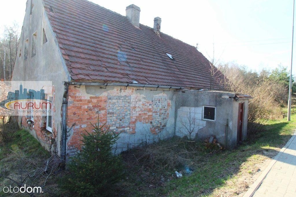 Żary, Dom do remontu w sąsiedztwie lasu.