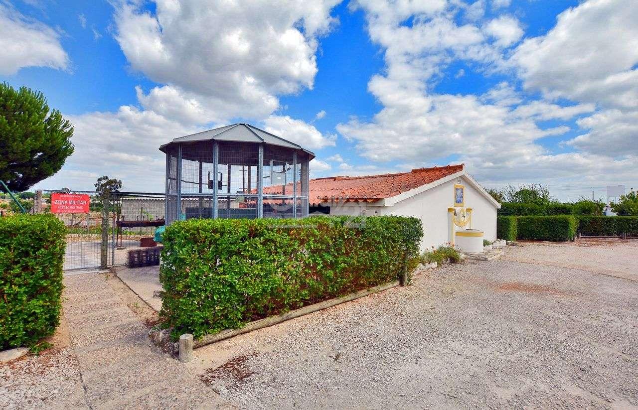 Quintas e herdades para comprar, Branca, Coruche, Santarém - Foto 50