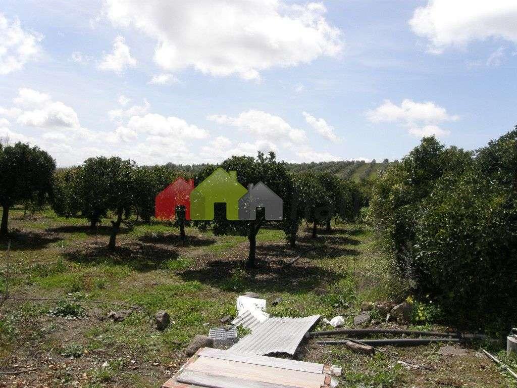 Terreno para comprar, Santa Vitória e Mombeja, Beja - Foto 8