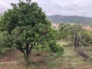 Moradia para comprar, Ceira, Coimbra - Foto 50