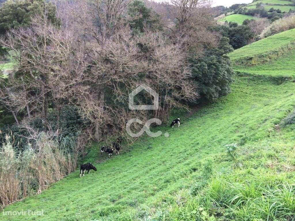 Terreno para comprar, Porto Formoso, Ribeira Grande, Ilha de São Miguel - Foto 7