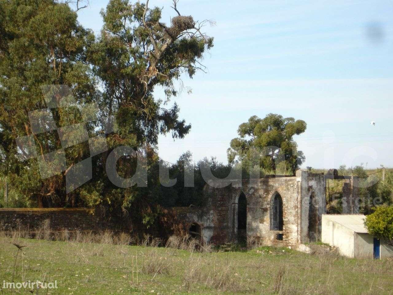 Quintas e herdades para comprar, Beja (Salvador e Santa Maria da Feira), Beja - Foto 35