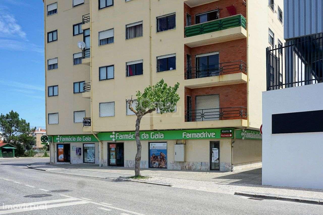 Apartamento para comprar, São Pedro, Coimbra - Foto 1