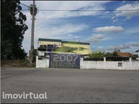 Armazém para comprar, Pinheiro da Bemposta, Travanca e Palmaz, Aveiro - Foto 2