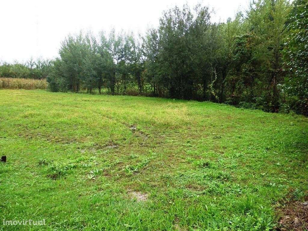 Terreno para comprar, Monsul, Braga - Foto 3