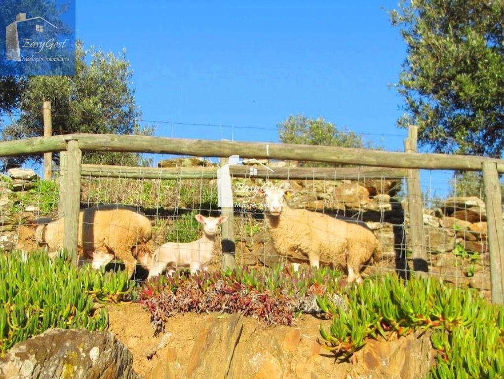 Quintas e herdades para comprar, Redondo - Foto 12