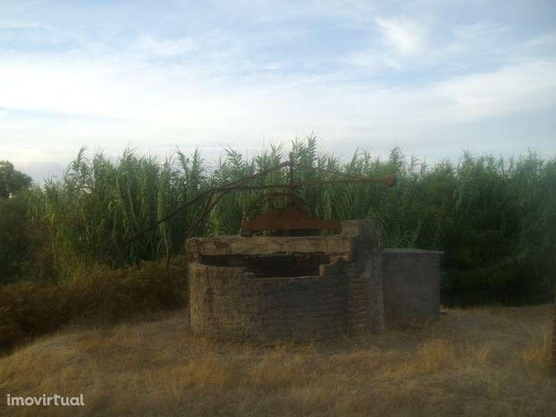 Quintas e herdades para comprar, Bemposta, Abrantes, Santarém - Foto 10
