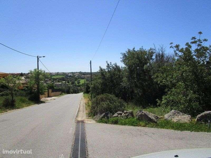 Quintas e herdades para comprar, Estômbar e Parchal, Faro - Foto 15