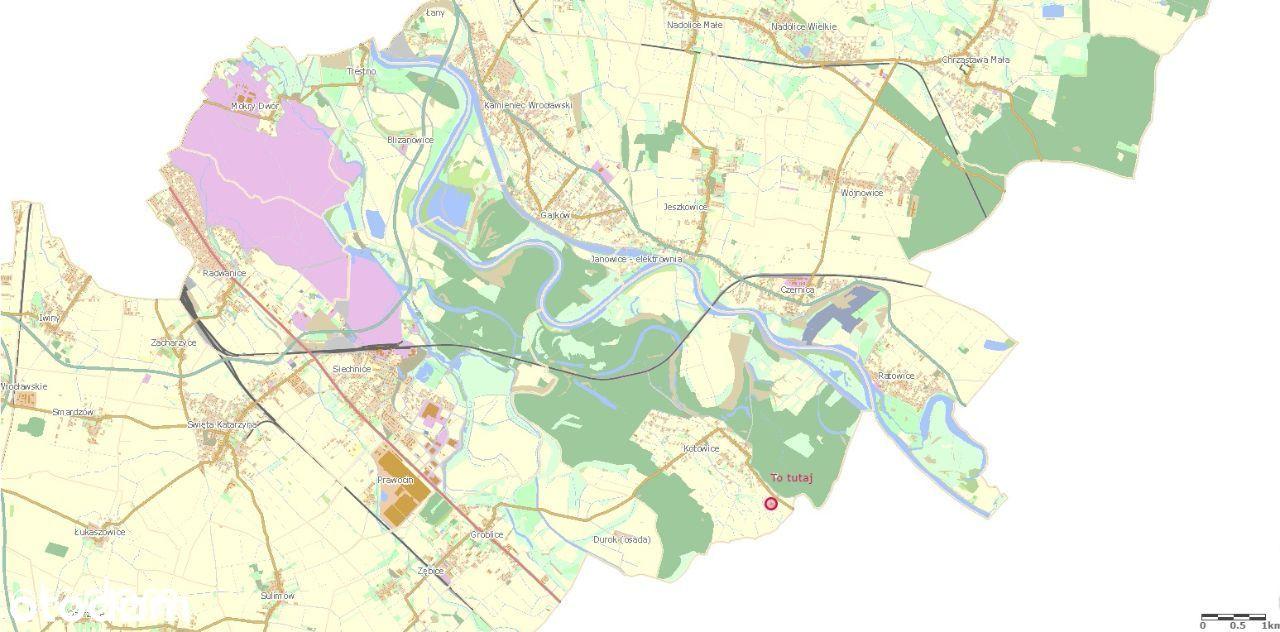 Działka zagrodowa Kotowice pow. 1 588 m2