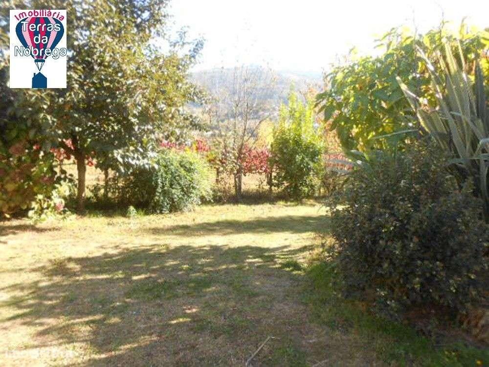 Quintas e herdades para comprar, Crasto, Ruivos e Grovelas, Viana do Castelo - Foto 8