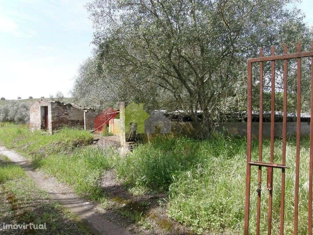 Terreno para comprar, Santa Vitória e Mombeja, Beja - Foto 6