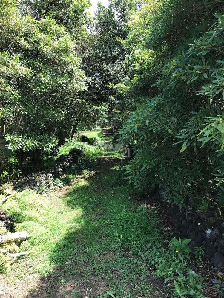 Terreno para comprar, Guadalupe, Ilha da Graciosa - Foto 6