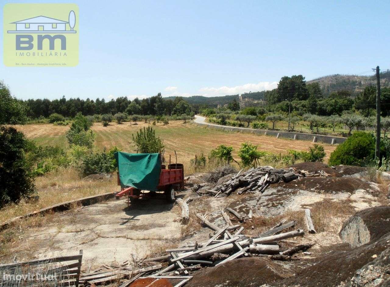 Quintas e herdades para comprar, Alcains, Castelo Branco - Foto 12