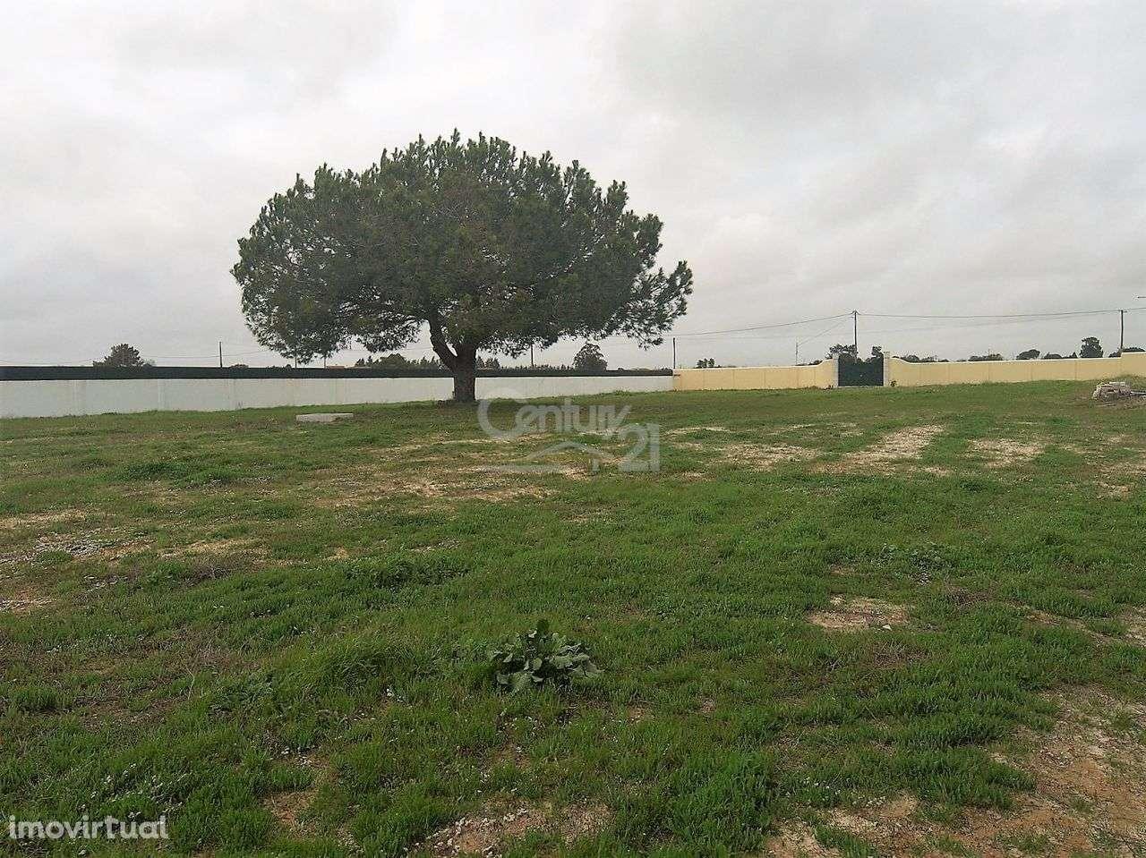 Terreno para comprar, Pinhal Novo, Setúbal - Foto 4
