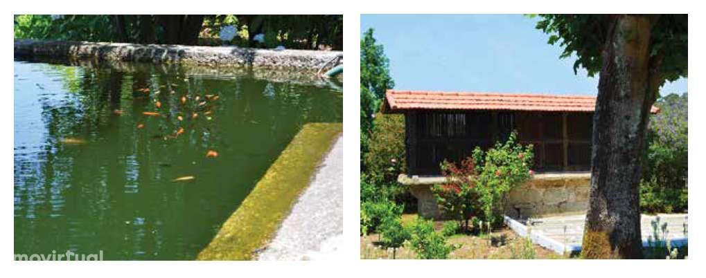 Quintas e herdades para comprar, Lemenhe, Mouquim e Jesufrei, Braga - Foto 14