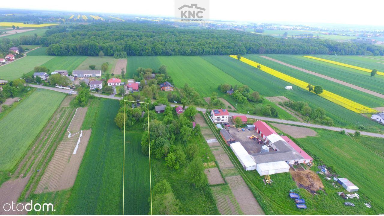 Siedlisko ze stawem kilka kilometrów od Lublina