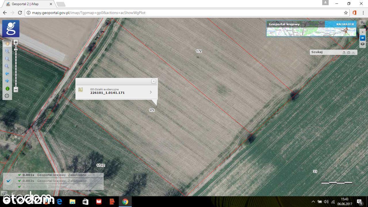 Działka Wyspa Sobieszewska 10 000m2