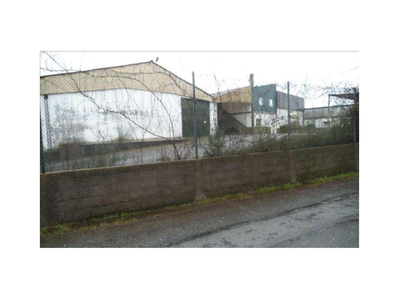 Armazém para comprar, Dominguizo, Castelo Branco - Foto 22
